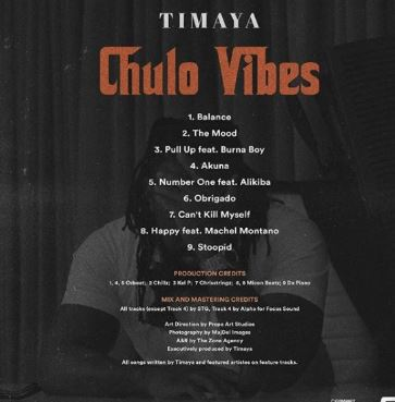 Mp3 Download: Timaya – Pull Up ft. Burna Boy
